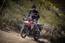 Team Scot Clark - Triumph Tiger Adventure - AW